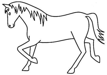 Good Horse Drawing